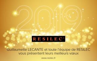 Vœux 2019 RESILEC